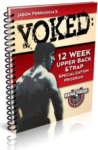 Yoked2012 195x300 How to Build Big Traps